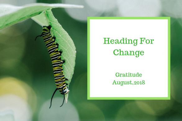Gratitude Circle